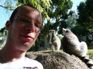 Lemury